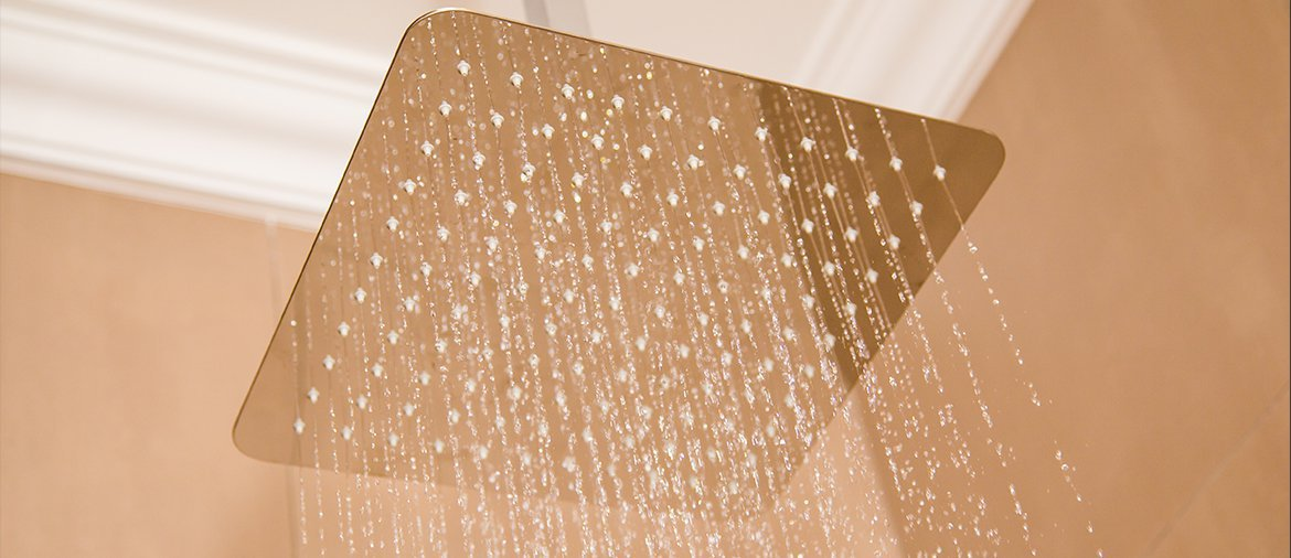 Linsol-Showerhead-rose-272
